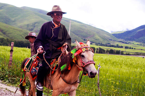 Horseback trail riding and Tagong Festival in Tibet