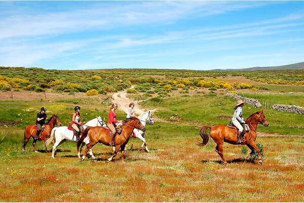 Horseback trails in the Gredos Valley Spain