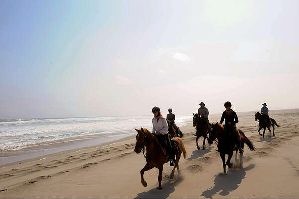 Horseriding on the Namibian beach