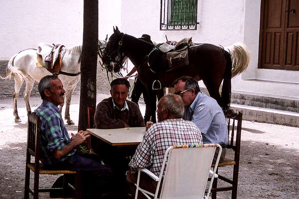 Horseriding trail in Andalusia