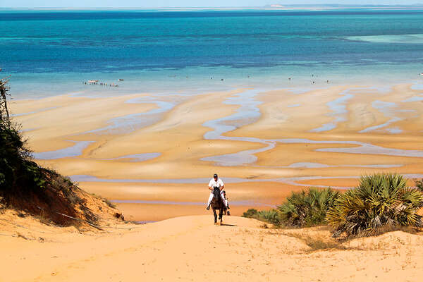 Horses and dunes in Mozambique