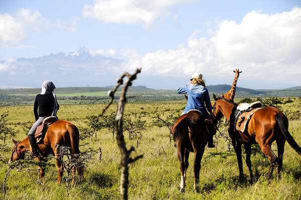 Horses and giraffes in Kenya on  a horseback safari