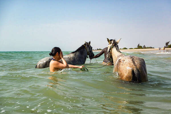 Horses and riders enjoying a swim in the Atlantic