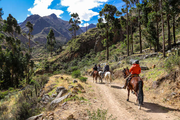 Horses and riders enjoying the Colca Canyon