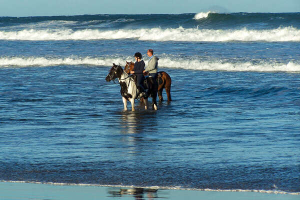 Horses and riders standing in the ocean, South Africa, Wild Coast