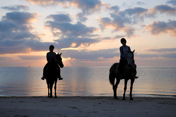 Horses and sunset in Mozambique