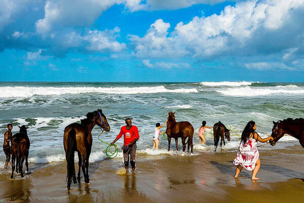 Horses bathing in the waves in Madagascar
