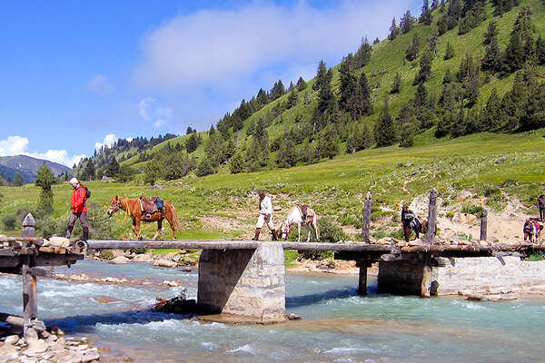 Horses crossing a river in Tibet