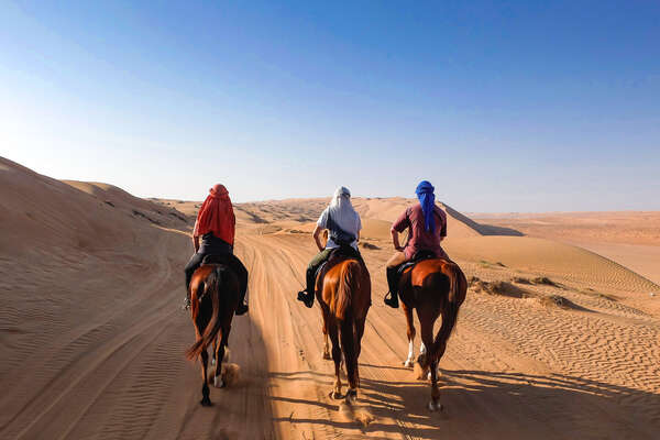 Horses in sand dunes on a desert trail ride