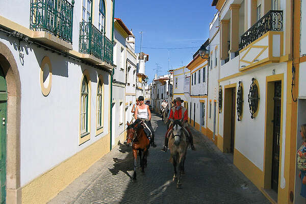 Horses in the portugueses streets