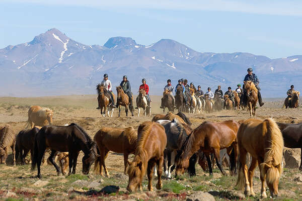 Iceland Kjolur trail ride