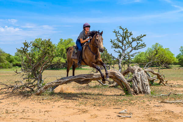 Jumping on the Tuli Trail in Botswana