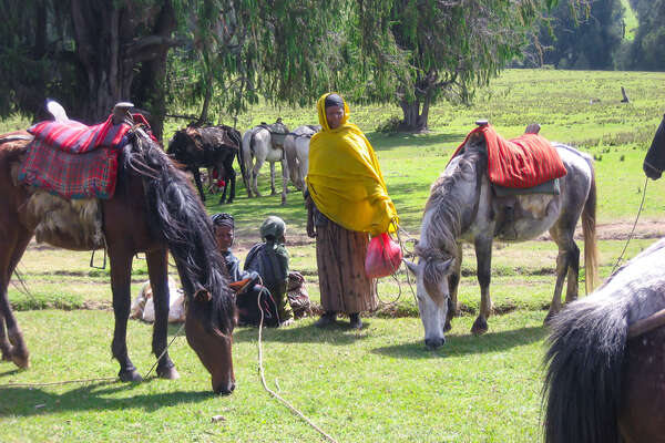 Locals helping with horses on a trail riding holiday in Ethiopia