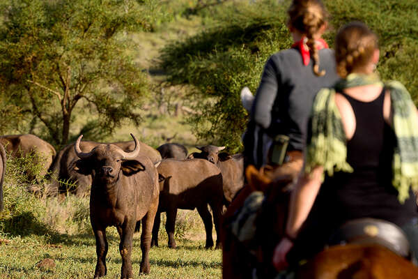 Mobile horse riding safari in Tanzania