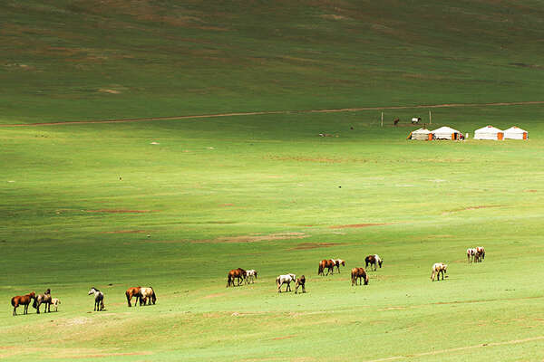 Mongolia and riders