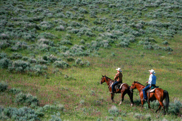 Montana ranchers on a trail