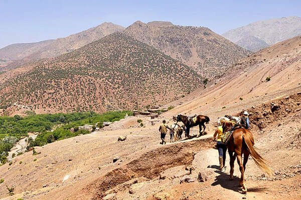 Morocco and horses in the high atlas