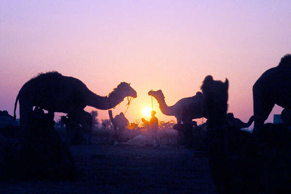 Naguar Fair and Sunset in india