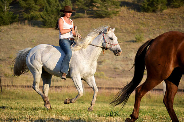 Natural horsemanship guest ranch in Montana