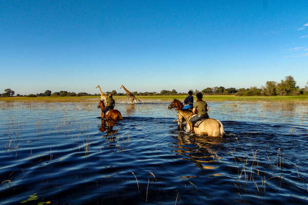 Okavango riding safari in Botswana