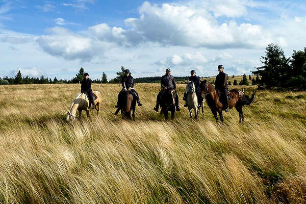 On horseback in the north east of france, Alsace region