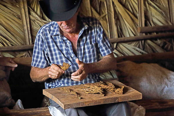 Preparing a Cuban Cigarre