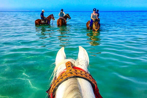 Red sea riding holiday