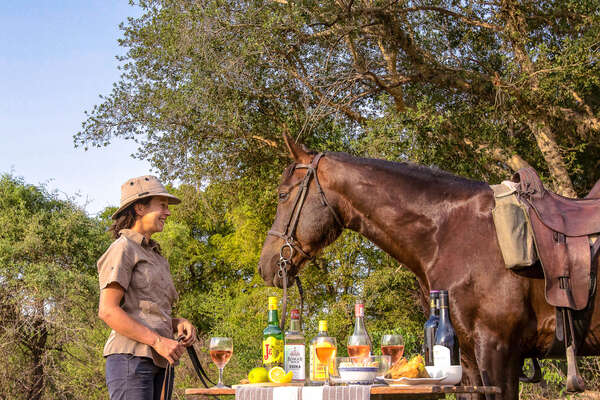 Rider and her horse at a sundowners spot in the Okavango