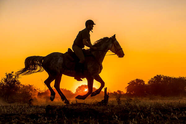 Rider cantering at sunset in Africa