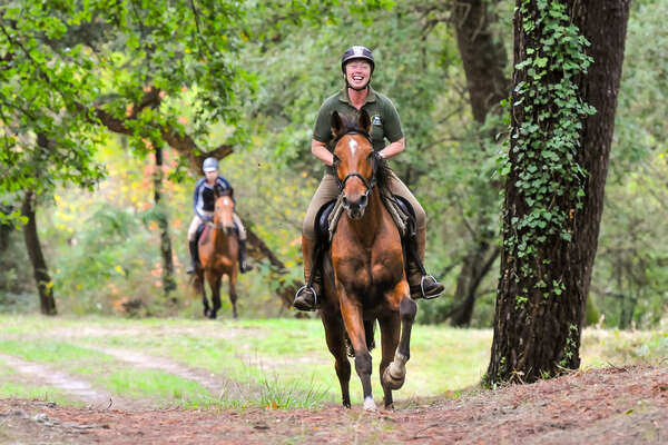 Rider cantering in the woods in France
