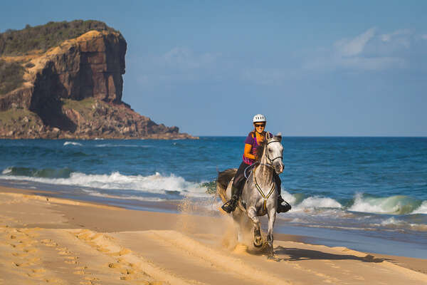 Rider cantering on an Arabian horse on an Australian beach