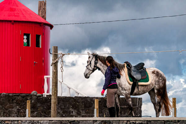 Rider, horse and red mill on Faial Island
