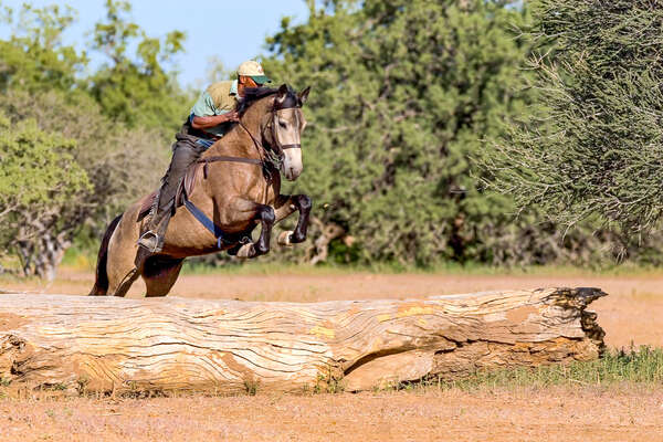 Rider jumping a log in Botswana
