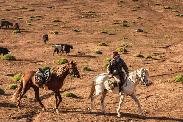 Rider leading a horse in a valley in the Atlas mountains