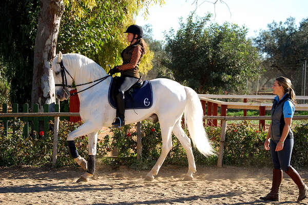 Rider on a dressage lesson and clinic in Spain