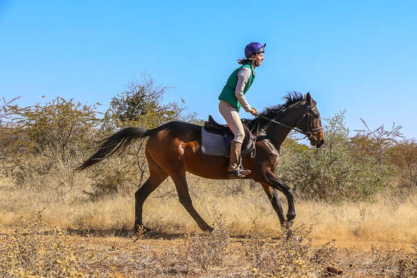 Rider on a horse safari in Africa