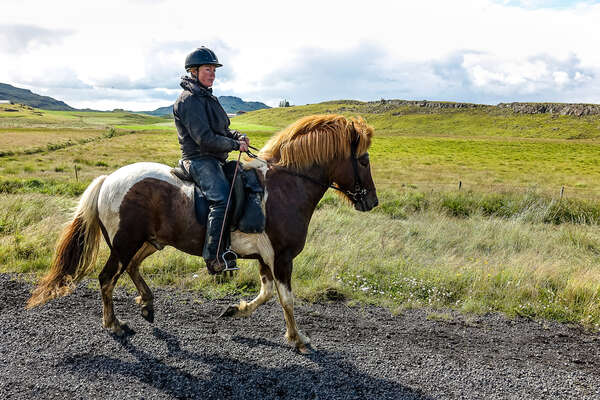 Rider riding an Icelandic horse in Iceland
