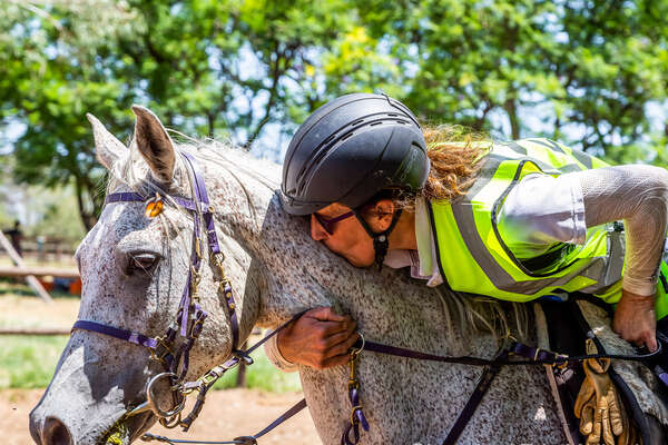 Rider showing some love to her Arabian endurance horse after an endurance race in Namibia