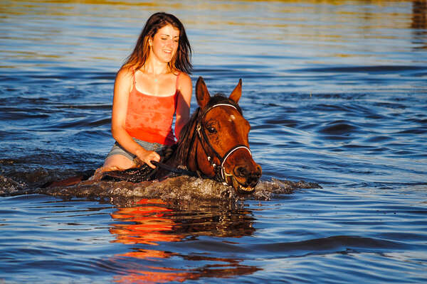 Rider swimming in a lake with a horse in South Africa