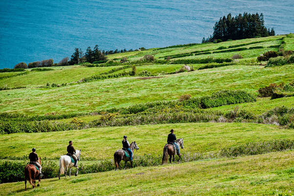 Riders and green fields of Faial