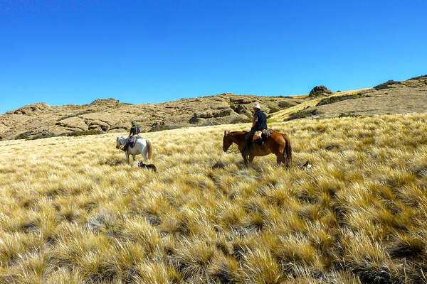 Riders and horses in Argentina on a trail ride