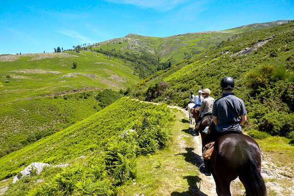 Riders and horses on a trail ride in Portugal