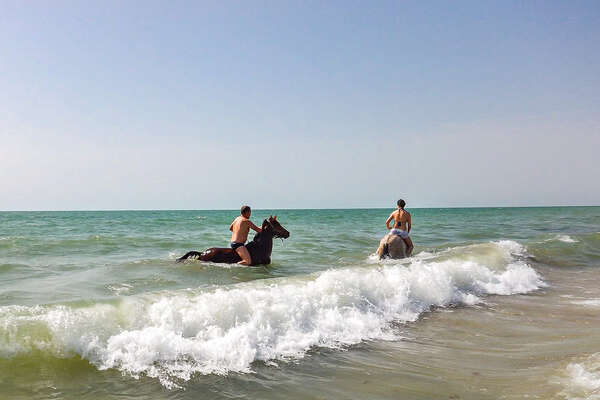 Riders and horses playing in the waves in Senegal