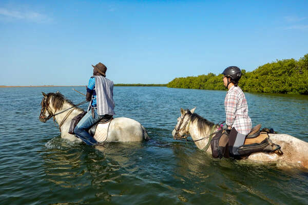 Riders and horses walking in water