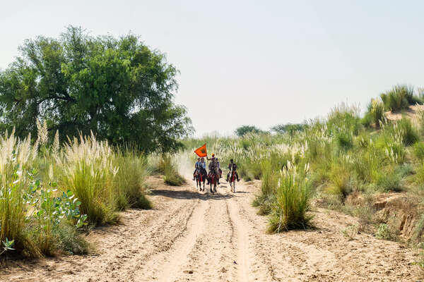Riders cantering down a sandy track in India