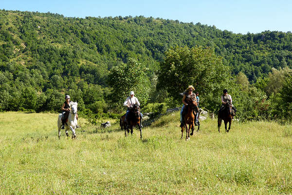 Riders cantering in a meadow in Albania