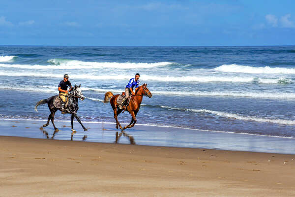 Riders cantering on a beautiful beach, Morocco