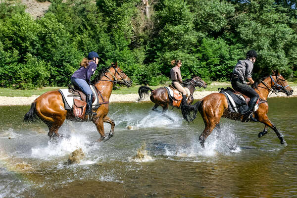 riders galloping in a river in Bulgaria