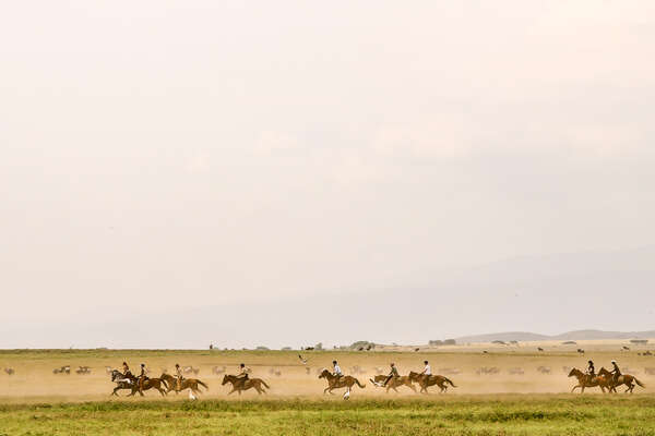 Riders galloping wth wildlife in Tanzania