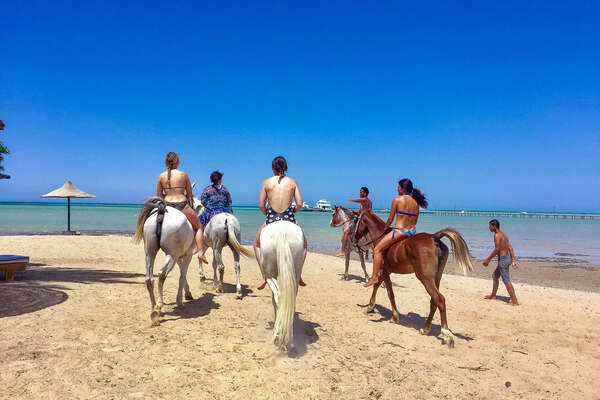 Riders going into the sea on horseback, Read Sea